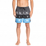 Шорты мужские Quiksilver Word block17 grey